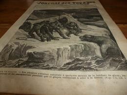 1882 JDV :Les Naufragés Chassent Le Phoque Pour Vivre;Les Patagons;Les Imans Et Les Derviches En Turquie;Chine; Etc - 1850 - 1899