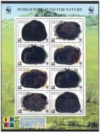 Kyrgyzstan 1999 - WWF Ibra 99 Miniature Sheet Mnh - Kyrgyzstan