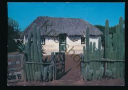 Curaçao -Straw Covered Cottage [AA43-6.967 - Curaçao