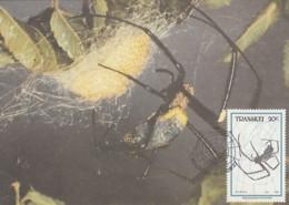 Transkei - Maximum Card Of 1987 - MiNr. 207 - Spiders - Nephila Pilipes - Transkei