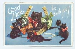 Fancy Postcard Novelty Good Luck Cats 12 Views Jersey Used Postage Due Kittens - Jersey