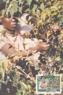 Venda - Maximum Card Of 1988 - MiNr. 167 - Coffee Industry - Venda