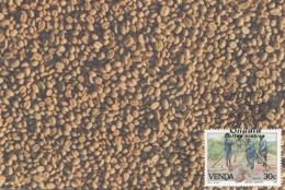 Venda - Maximum Card Of 1988 - MiNr. 168 - Coffee Industry - Venda