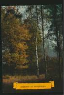Huybergen  - Gelopen Met Postzegel [AA44-1.048 - Zonder Classificatie