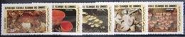 COMORES                   N° 435/439                       NEUF** - Comores (1975-...)