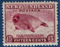 Newfoundland 1941, 15 C Sadlebag Seal 1 Value MNH, Line Perf 12½ Baby Whitecoat - Other