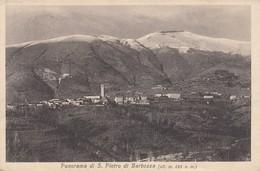 SAN PIETRO DI BARBOZZA-TREVISO-CARTOLINA VIAGGIATA IL 29-8-1927 - Treviso