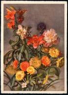 6477 - Glückwunschkarte - Blumen - Künstlerkarte VEB Volkskunstverlag Reichenbach - Blumen