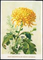 6210 - Glückwunschkarte - Blumen - Künstlerkarte - Verlag Reichenbach - Blumen