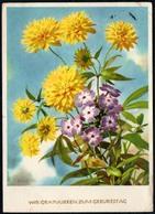 8249 - Glückwunschkarte Geburtstag - Blumen - Künstlerkarte Finke ?? - Verlag Reichenbach - Blumen