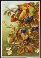 A1205 - Glückwunschkarte - Blumen - Künstlerkarte DDR - Dresdner Verlagsgesellschaft - Blumen