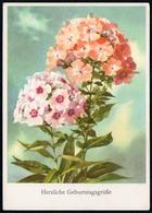 A5930 - Glückwunschkarte Geburtstag - Blumen - Künstlerkarte DDR - Verlag Reichenbach - Blumen