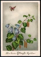 A3954 - Glückwunschkarte  - Blumen Schmetterling - Künstlerkarte Zoeke & Mittmeyer Berlin - Blumen