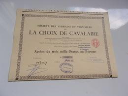 Terrains Et Vignobles De LA CROIX DE CAVALAIRE - Shareholdings