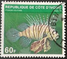 Ivory Coast  1979 Fish USED - Ivory Coast (1960-...)