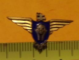 REDUCTION :tête De Sphinx Avec Croix De Lorraine Sur Le Dessus , Ailes Sur Fond Bleu,ETAT VOIR PHOTO  . POUR TOUT RENSEI - Army
