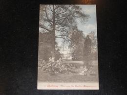 MALINES - Un Coin Du Jardin Botanique - Niet Verstuurd - Uitg. Marcovici N°35 - Malines