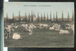 CPA 71 Gigny Sur Saone - Les Communaux  - Circulée ? - Autres Communes