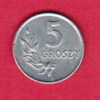 POLAND  5 GROSZY 1949 (Y # 41) #5329 - Polen