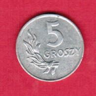 POLAND  5 GROSZY 1949 (Y # 41) #5330 - Poland