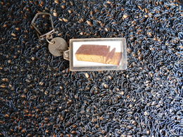 Porte-clefs Unimel, Le Vrai Pain D'épices   (Box 4-2) - Porte-clefs