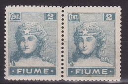 FIUME 1919 - ALLEGORIE E VEDUTE - Sass.C32 In Coppia Con ERRORE!  MNH** VF - Udine