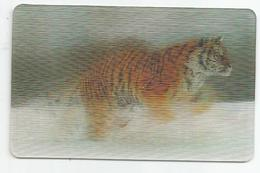 """Carte Hologramme """" Tigre De Sibérie"""" N°7 /44 Des Magasins Match Et Cora - Autres"""