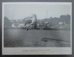 Photographie De Presse - Sports - Plongeon Acrobatique - Saut De Carpe Retourné Par André Blaty - Sport