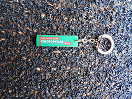 Porte-clefs Chewing-gum Chlorophylle MAY  (Box 4-2) - Porte-clefs