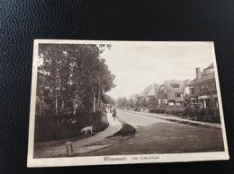 Wassenaar Van Calcarlaan - Postkaarten