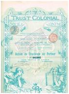 Action Ancienne - Trust Colonial -Titre De 1899 - N° 081987 - Banque & Assurance