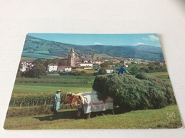 64 - AINHOA Village Type Du Pays Basque - Ainhoa