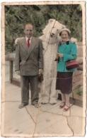 Megeve ? C.1950 Ours Blanc Avec Femme Couple Déguisement Carte Photo Coloriée - Lieux