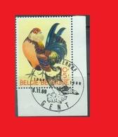 BEL '69, FDcancel On Rooster Coq Hahn Pigeon / Ghent Cropper / Boulant Gantois / Genter Kröpfer MNH ** - Pigeons & Columbiformes