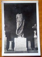MUSEO DI CAGLIARI Fotografia - Fotografia