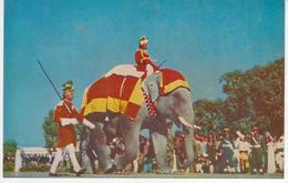 °°° 13412 - INDIA - THE REPUBLICAN ELEPHANT °°° - India