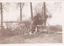 Geschütz Canon 6 X  Photo Allemande LOT 1 WK 1 ° Guerre - War 1914-18