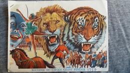 SOUVENIR DU CIRQUE GEANT PINDER 1957 LION TIGRE CHEVAL CLOWN PAS CP FORMAT 11 PAR 15.5 CM - Circus