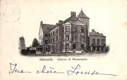 Vielsam - Château De Hermamont (1899) - Vielsalm