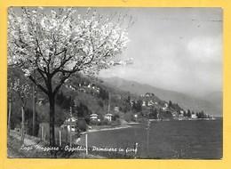 Oggebbio (VB) - Viaggiata - Italie