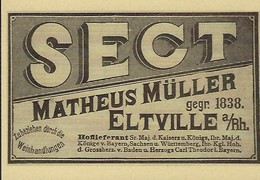 SECT - MATHEUS MÜLLER   2 Scans - Reklame