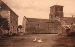 Chavagnes Les Redoux : église - France