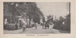 CPA Birkeread - La Grande Route (avec Jolie Animation) (format Italien 14 X 7 Cm) - Danemark
