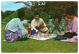 SINGAPORE - QUEEN ELIZABETH WALK - SOME MALAYANS ENIOYING A PICNIC / WITH MALAYSIA THEMATIC STAMPS-BUTTERFLY - Singapore