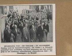 Vilvoorde : Huldiging Van ' De Violier ' - Old Paper