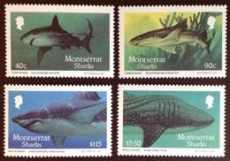 Montserrat 1987 Sharks Fish MNH - Fische