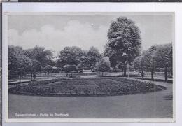 AK-36490-271  -  Gelsenkirchen , - Partie Am Stadtpark - - Gelsenkirchen