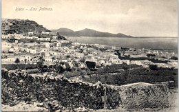 ESPAGNE -- Las Palma - Riso - La Palma