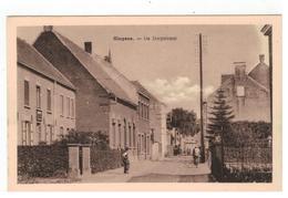 Hingene - De Dorpstraat - Bornem