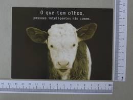 BRAZIL - O QUE TEM OLHOS -  PESSOAS INTELIGENTES NÃO COMEM -   2 SCANS    - (Nº30045) - Belo Horizonte